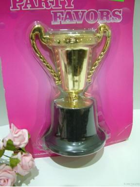 Puchar dla zwycięzcy