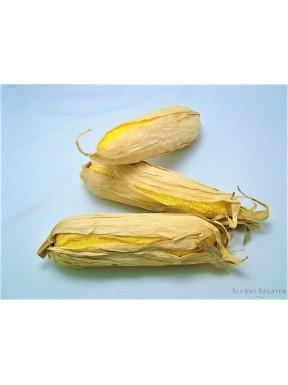 Sztuczna kolba kukurydzy