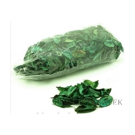 Susz dekoracyjny zielony