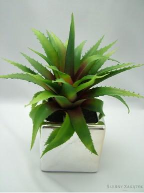 Aloes sztuczny