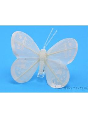 Motyl na druciku